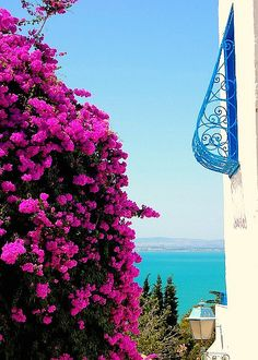 SIDI BOU SAID in Tunisia, one of the most amazing places I've visited!