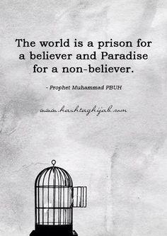 قال رسول الله صلى الله عليه وسلم : الدنيا سجن المؤمن وجنة الكافر This world is a prison for the believer and paradise for the disbeliever.