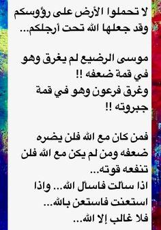 DesertRose,;,لا غالب إلا الله,;,