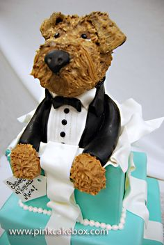 Airedale Bridal Shower Gift Box Cake