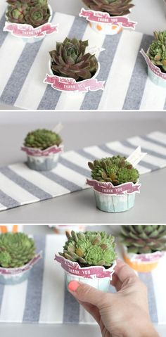 Not sure if you'd be into the idea of a small plant, to give something living so people could have something for a long time to remind them of your wedding?