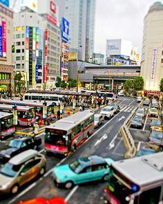 Shibuya, Japan. Look at all the color!