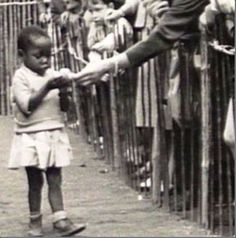 TRIP DOWN MEMORY LANE: OF OTHER RACES IN HUMAN ZOOS AND THE FALLACY OF WHITE/CAUCASIAN MENTAL SUPREMACY