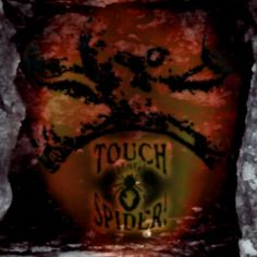 """Podcast 206 - In contact with the dead Gathered in a darkened room...  This week our""""Touch The Spider! Podcast""""presents the song """"In contact with the dead"""". We record """"In contact with the dead"""" in April 2010. You find the song on our CD-album """"DEAD@LAST"""".  http://www.touchthespider.de/Podcast/Podcast.html or http://www.touchthespider.de/Download.html"""