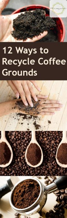 12 Ways to Recycle Coffee Grounds