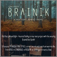 Brainik Font Family: a Typeface You'll Love – Just $19!
