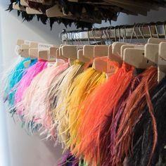 What colour would you choose from this colourful delicate display of ostrich feathers? My Sewing Room, Ostrich Feathers, Delicate, Essentials, Victoria, Display, Colour, Instagram, Design
