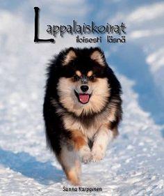 """My own book """"Dogs of Lapland - Cheerfully Present"""" (Kirjakaari/Lappalaiskoirat ry)."""