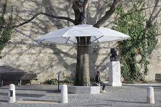 La présence d'arbres et d'espaces verts dans les villes est très importante. En été, les arbres offrent des abris naturels pour ceux qui veulent échapper au soleil. En hiver, comme les arbres perdent leurs feuilles, ils perdent aussi leur capacité d'abriter. L'installation conçue par Allégorie pour le festival light & trees à Genève permet à l'arbre de regagner sa fonction perdue, en incorporant une sorte de parapluie.