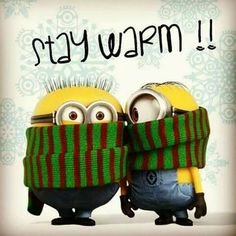 For all my friends who are cussing me for loving all the snow lol Cute Quotes, Funny Quotes, Funny Memes, Funny Sarcasm, Hilarious Jokes, Funny Cartoons, Minion Pictures, Funny Pictures, Funny Pix