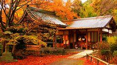 この画像は「紅葉を見に行きたくなる!日本の美しい紅葉画像集」のまとめの23枚目の画像です。