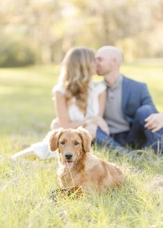 Engagement Photos with Dogs: Inspiration and Tips - Daily Dog Tag - ©️️Ale. - Engagement Photos with Dogs: Inspiration and Tips – Daily Dog Tag – ©️️Alex & Dylan Photo - Hunting Engagement Photos, Forest Engagement Photos, Country Engagement Pictures, Engagement Shots, Engagement Photo Outfits, Engagement Couple, Fall Engagement, Engagement Photography, Winter Engagement Photos With Dog
