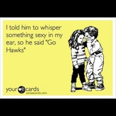 Iowa Hawkeyes GO HAWKS!