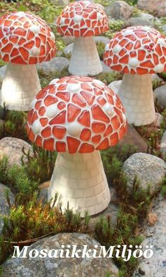 mushrooms for my garden