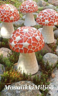 mushrooms for my garden