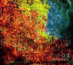 Title  Autumn Leaves  Artist  Judy Wolinsky  Medium  Photograph - Photography