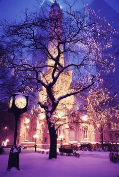 Snowy Night, Chicago, Illinois
