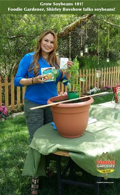 SET YOUR DVR! Foodie Gardener, Shirley Bovshow presents on how to grow soybeans plus fascinating information about this versatile food crop. On Home & Family on Hallmark Channel USA,  Tuesday at 10am pst.