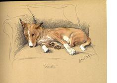 Little Basenji Dog on Sofa Fridge Magnet Basenji by NoCrybabyDoGs, $10.00