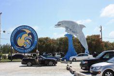 #GrassyKey #Florida www.meehr-erleben.de