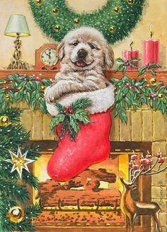 Christmas dog By Richard de Wolfe