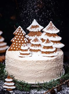 Gingerbread Cake with Chocolate and Orange - Recipe - Little Confectionery Chocolate Strawberry Cake, Chocolate Art, Christmas Desserts, Christmas Cookies, Fig Cake, Bowl Cake, Pecan Nuts, Gingerbread Cake, Food Decoration