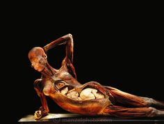Gunther von Hagens' various works. The creator of the plastination process that preserves tissues by replacing the water in the body with polymers. His work blends science, biology, sculpture, and social taboos into an amazing experience. The works that feature pregnant women can be difficult to see, but at the same time elegant and respectfully done. It is one of the most amazing pieces of art I have ever had the privilege to see in person.