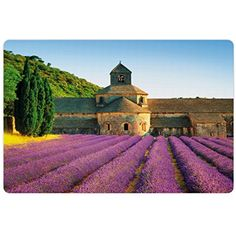 Lavender Pet Mats for Food and Water by Lunarable, Abbey of Senanque in France Architecture Countryside Blooming Rows Scenic, Rectangle Non-Slip Rubber Mat for Dogs and Cats, Tan Violet Green * More info could be found at the image url. (This is an affiliate link) #DogFeedingWateringSupplies