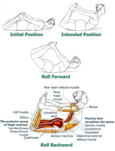 Office workers and anybody who tends to sit a lot will find these exercises very helpful in alleviating problems and symptoms associated with prolonged sitting. If you are diagnosed with a spinal or back injury, consult with your doctor if these exercises are suitable for you. The series so far: Exercise #1: Cat-Cow Exercise #2: Back Extension …