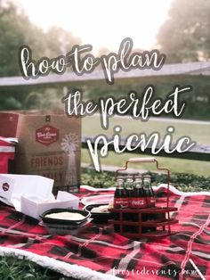 How to Plan the Perfect Picnic with No Cooking or Clean-Up! Picnic Recipes, Picnic Ideas, Picnic Foods, Mom Blogs, Place Card Holders, How To Plan, Cooking, Party, Cucina
