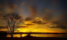 http://fineartamerica.com/featured/lone-tree-sunrise-dan-holland.html