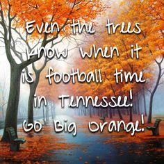 Go Big Orange!!!! PROUD TO BE A VOL!!!