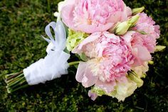 Peonies of Love (Andrea's Images Photography)