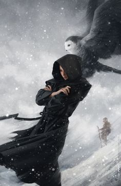 Female wizard / sorcerer with owl familiar / summoned creature in the snow with background adventurer RPG character inspiration for a spell caster Tommy Arnold | The Art of Tommy Arnold