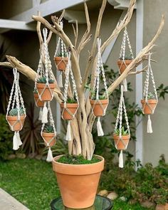 23 ideas for integrated planters and DIY projects The herb garden would be a wonderful addition to a front porch or perhaps a back patio. It would be useful to plant a small garden or even. Container Flowers, Container Plants, Container Gardening, Macrame Plant Hangers, Macrame Projects, Diy Planters, Macrame Patterns, Cacti And Succulents, Succulent Tree