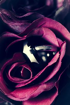 BATMAN Wedding Rings! Alen Fetahi Photography by Beth and Brian 10/6/12, via Flickr