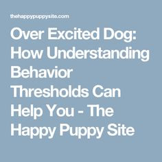 Over Excited Dog: How Understanding Behavior Thresholds Can Help You - The Happy Puppy Site