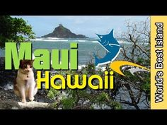 Maui, Hawaii BEST Places to Visit - YouTube