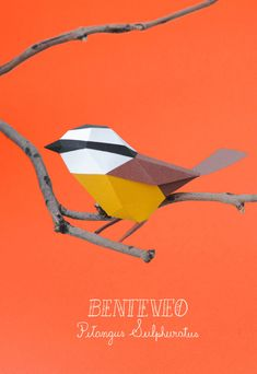 Carolina and Juan, two art directors and designers based in Buenos Aires, gathered under the name of Estudio Guardabosques have realized different series of paper animals : different kinds of birds, foxes and raccoons. A selection of their creations is available in pictures.