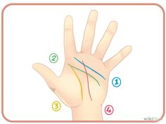 How to Read Palm Lines: 8 Steps (with Pictures) - wikiHow