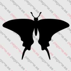 Pegame.es Online Decals Shop  #animal #butterfy #insect #vinyl #sticker #pegatina #vinilo #stencil #decal
