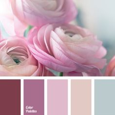 Palette Of Peony Petal Pinks. Colour Pallette, Color Palate, Colour Schemes, Color Patterns, Color Combinations, Design Seeds, Colour Board, Color Swatches, Color Theory