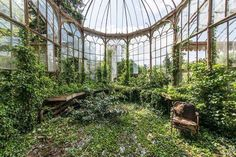 Enchanting abandoned greenhouse                                                                                                                                                                                 More