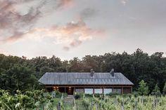 Balatoni nyaraló, vörösfenyő tetővel   Robinwood