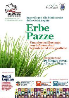 """""""Erbe Pazze"""" Una mostra illustrata con informazioni botaniche ed etnografiche - Roccagorga"""