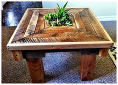 (etsy) I really like the idea of a coffee table with a planter in the middle.