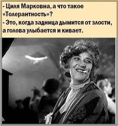 Funny Phrases, Einstein, Che Guevara, Humor, Memes, Smile, Funny Taglines, Humour, Meme