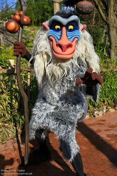 Rafiki - Magic Kingdom. We caught an autograph from Rafiki by luck! He was just about to sneak out of Adventureland.