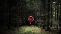 Magical forest - I combined Brenizer method and levitation photography! First time trying and I think it turned out pretty good! :) Please share if you like it!  104 images post processed with Lightroom and Photoshop