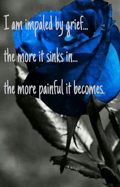 I am impaled by grief...the more it sinks in...the more painful it becomes.